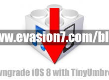 Tinyumbrella download
